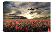 Brave Men All , Canvas Print