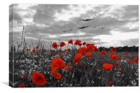 Warbirds Remembrance - Selective , Canvas Print