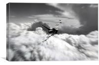 Typhoon Speed , Canvas Print