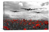 Lancaster Remembrance - Selective, Canvas Print