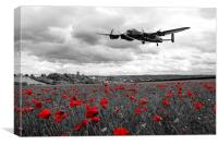 Remember - selective version, Canvas Print