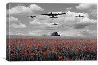 Over The Fields - Selective , Canvas Print