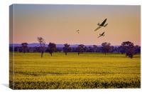Spring Spitfires , Canvas Print