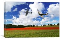 Spitfire Poppy Fly Past , Canvas Print