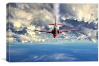 Red Leader, Canvas Print
