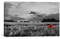 Final Sortie - Selective, Canvas Print