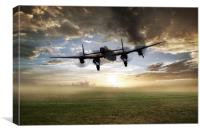 In For A Rough Landing, Canvas Print