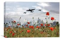 BBMF Over The Poppies, Canvas Print