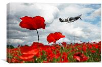 Spitfire Over The Poppy, Canvas Print