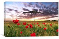 Vulcan Poppy Fly Past, Canvas Print