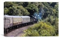 The Paignton Steam Train, Canvas Print