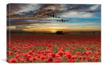 Remembrance Flight, Canvas Print