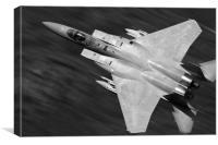 Eagle Speed, Canvas Print