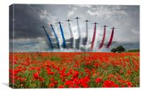 Red Arrows Poppy Field, Canvas Print