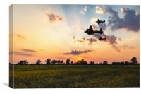 BBMF Sunset, Canvas Print