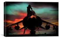 Sea Harrier Sillhouette, Canvas Print