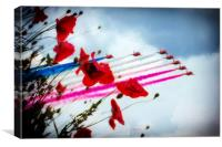 Red Arrows Poppy Abstract, Canvas Print