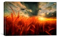 BBMF Country Tour, Canvas Print