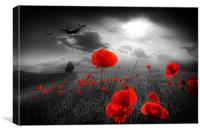 Royal Air Force Tribute - Selective, Canvas Print