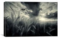 BBMF Harvest, Canvas Print