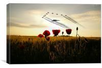 XH558 Red Arrows Poppy Field, Canvas Print