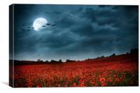 Under a Summertime Moon, Canvas Print