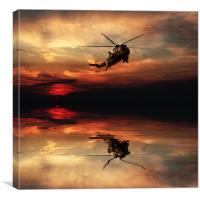 Sea King Sunset, Canvas Print