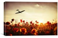 Spitfire The Final Sortie, Canvas Print