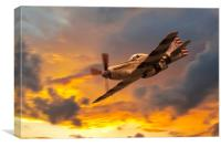 P-51 Fragile but Agile, Canvas Print