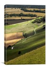 Long Man Path, Canvas Print