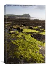 Kimmeridge Bay Sea weed, Canvas Print