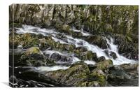 Snowdonia Waterfall, Canvas Print