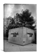 Lincoln Park Zoo, Canvas Print