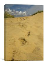 Camber Dunes, Canvas Print