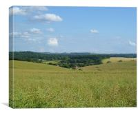 View over fields nr Froxfield, Canvas Print