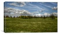 HDR Landscape