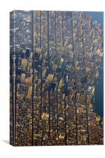 New York Fly By Shooting I, Canvas Print