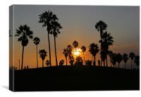 California Dreaming II