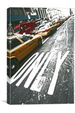 Only cabs, Canvas Print