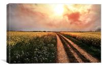 Country Road, Take Me Home, Canvas Print