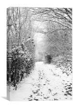 Saltwells Snow, Canvas Print