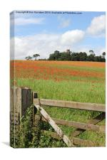 Faringdon Folly Poppies, Canvas Print