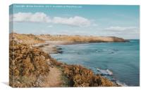 Caswell Bay Beauty, Canvas Print