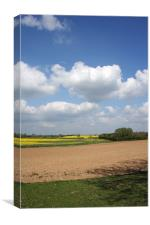 Leicestershire Spring, Canvas Print