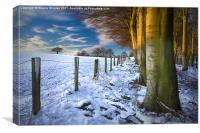 Snowfall Sunrise, Canvas Print