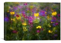 Meadow Heaven, Canvas Print