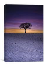 Winter's Isolation, Canvas Print