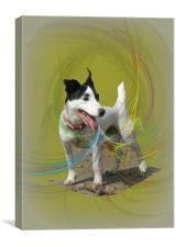 Just Being Buster., Canvas Print