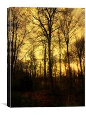 An Evenings Stroll., Canvas Print