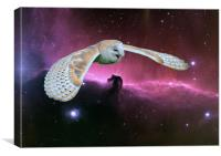 Barn Owl v. Horse head Nebula., Canvas Print